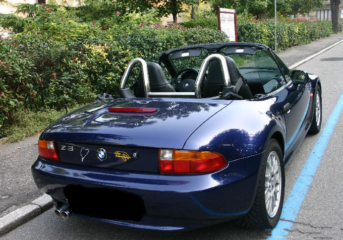Bmw Z3 Roll Over Bars